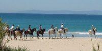 Pasea a caballo con Hotel Misiana Tarifa