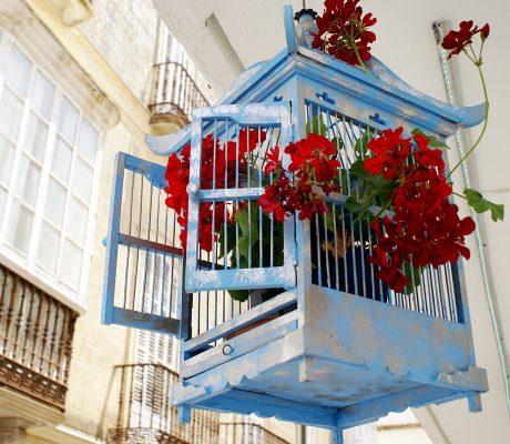 Visita Tarifa con Hotel Misiana